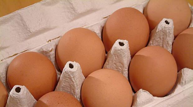 Хулиган бросил яйцо в президента и попал. Его направили на лечение