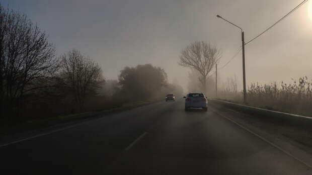 О тумане предупредили жителей Ростовской области