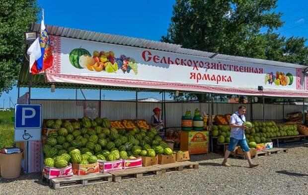 Летом на Кубани начнут работать 356 придорожных ярмарок