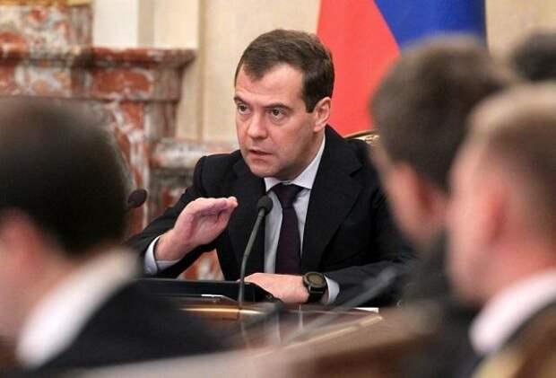 Дмитрий Медведев призвал разделять критику власти и ее оскорбление