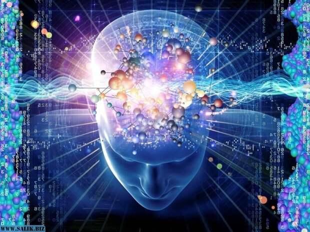 Интеллект выше среднего: какие признаки на это указывают