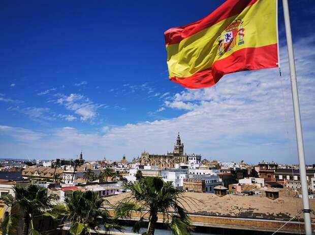 Плюшевая игрушка и питомец напрокат: на что идут испанцы ради возможности выйти на улицу