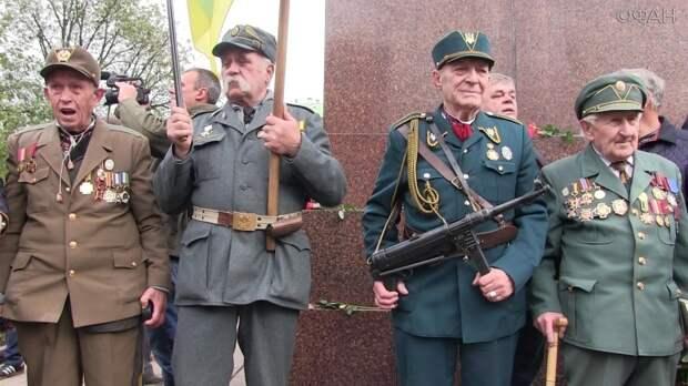 Когда Запад забеспокоится о подъеме неонацистов в Украине