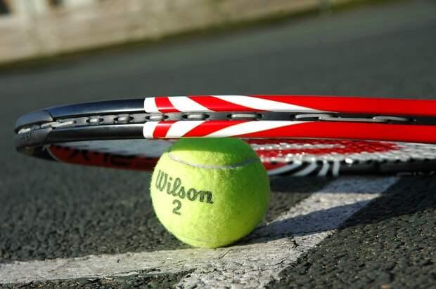 Теннис. Фото: pixabay.com
