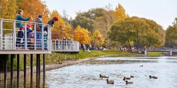 В Москве стартовало голосование по качеству благоустройства парков. Фото: mos.ru