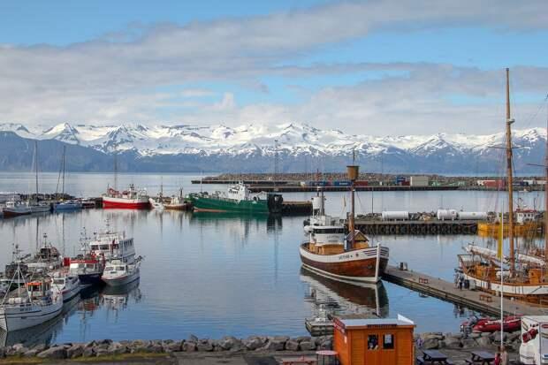 Толерантность: первому африканцу в Исландии поставят памятник