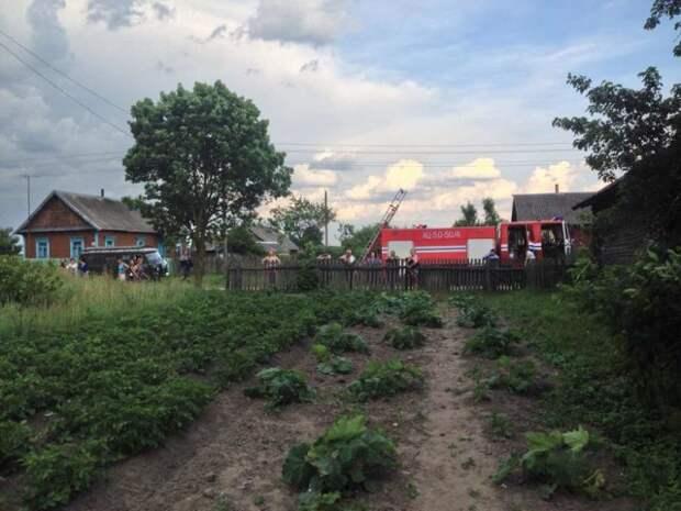 В Брестской области работники МЧС приехали спасти выпавшего из гнезда аиста Брест, аист, мчс, спасение птенца