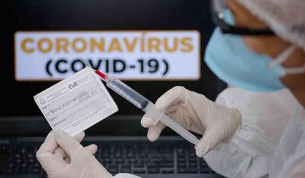 В России выявили рекордно низкое число новых случаев коронавируса