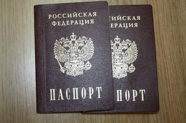 В МВД пояснили, в каких случаях могут аннулировать российское гражданство