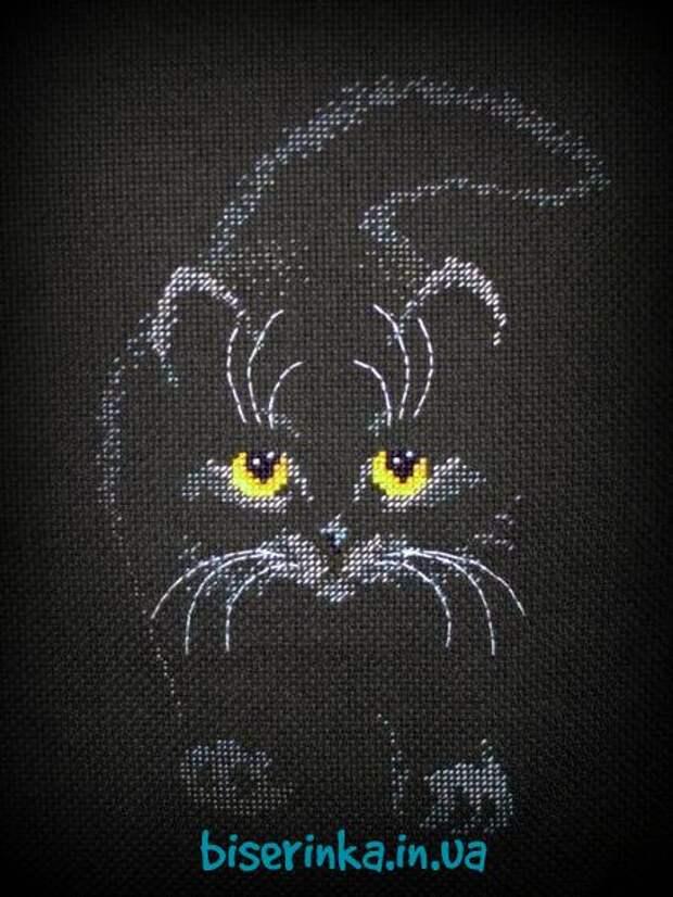 ВЫШИВАЙКА. Чёрный кот