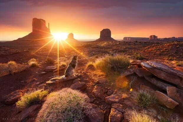 20 живописных мест разных стран в лучах восходящего солнца