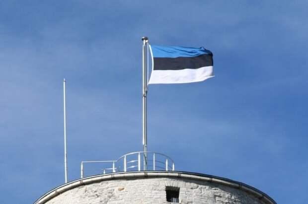 Власти Эстонии решили выслать российского дипломата
