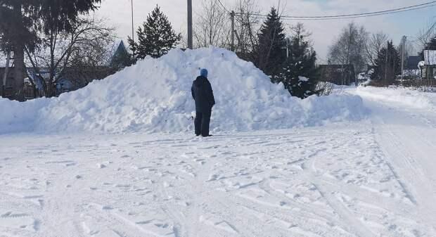 Хамский сосед стал обладателем впечатляющего снежного террикона. Мой супруг оценивает его весенние перспективы.