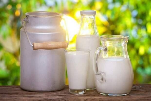 Правда и мифы о молоке — чему верить?