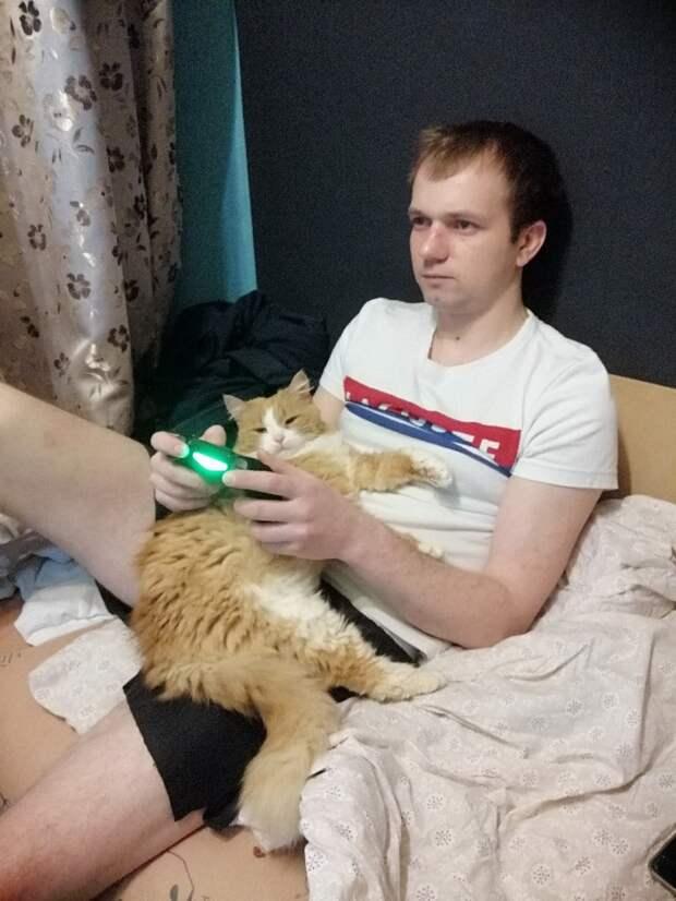 Ласковая уличная кошка облизывала руки тем, кто ее подкармливал