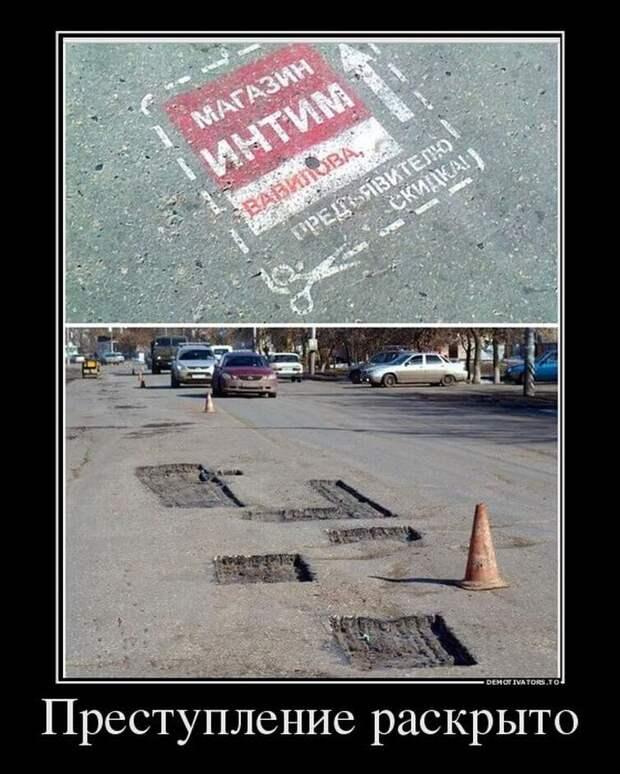 Смешные фото для настроения)