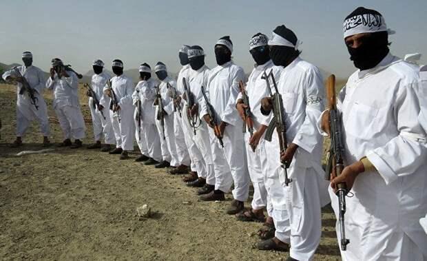 The Washington Post (США): по оценкам разведки, из-за сговора России со связанными с «Талибаном»* боевиками погибло несколько американских военнослужащих