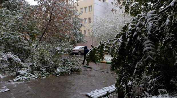 Мокрый снег и усиление ветра: в Новосибирскую область приходит похолодание