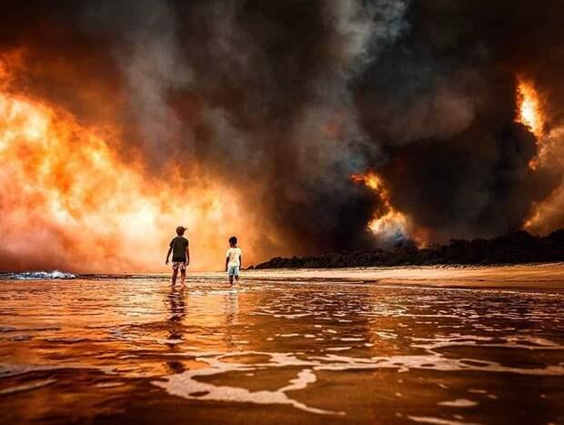 В Сиднее впервые с 2009 года объявлен катастрофический уровень пожарной опасности