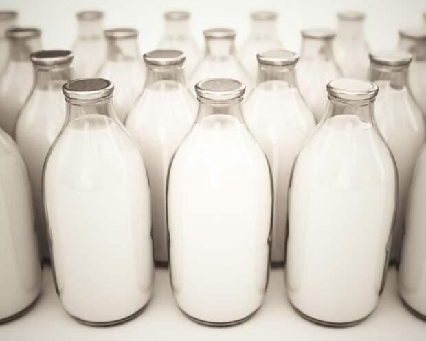 Из гомогенизированного и ультрапастеризованного молока простокваша вряд ли получится / Фото: news.milkbranch.ru