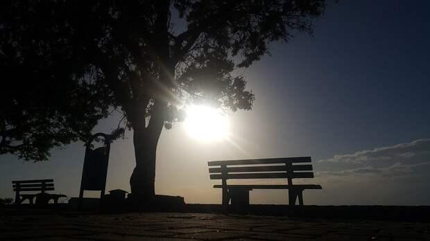 Закат, Дерево, Солнечный, Пейзаж, Облака, Турция