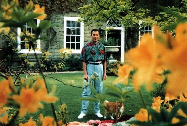 28 лет без Фредди Меркьюри: Малоизвестные факты о легендарном музыканте