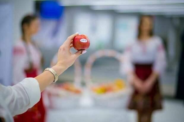 Немецкие яблоки и учеба в школе: самые странные вопросы, задаваемые в аэропорту
