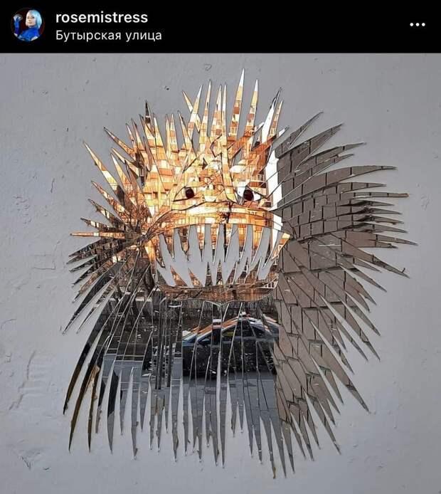 Фото дня: зеркальная рыба на Бутырской