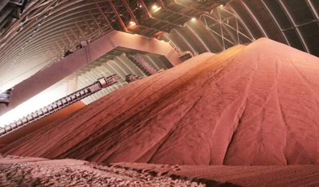 Санкции ЕСнезатронули основную экспортную продукцию «Беларуськалия»