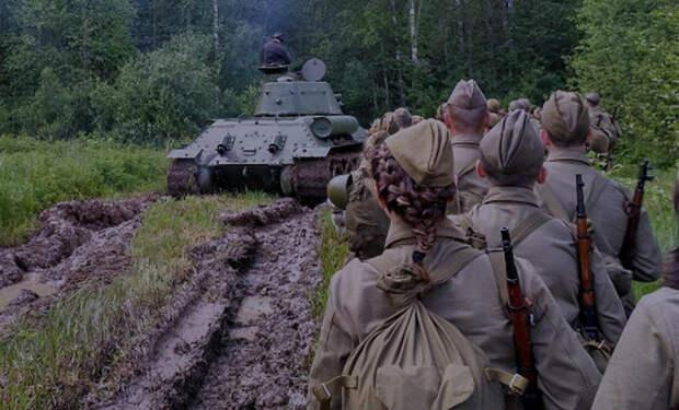 Мясной Бор: черные копатели исследовали место тяжелых боев