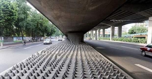 6 видов «враждебной архитектуры», из-за которой бездомные не могут спать на улице