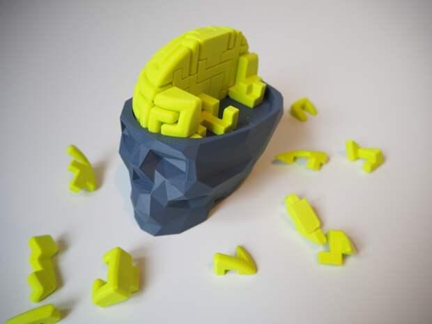 В 3D-печатном биореакторе вырастили мини-копию человеческого мозга