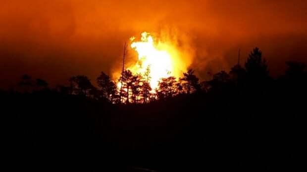 В Крыму люди стали чаще поджигать леса