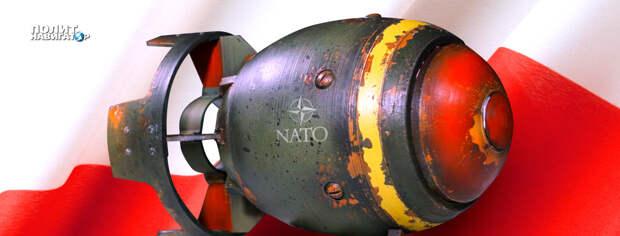 Польские отморозки и русофобы первыми попадут под ядерный удар – Кедми