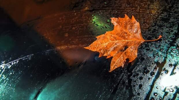 Погода в Удмуртии: в понедельник будет холодно и дождливо