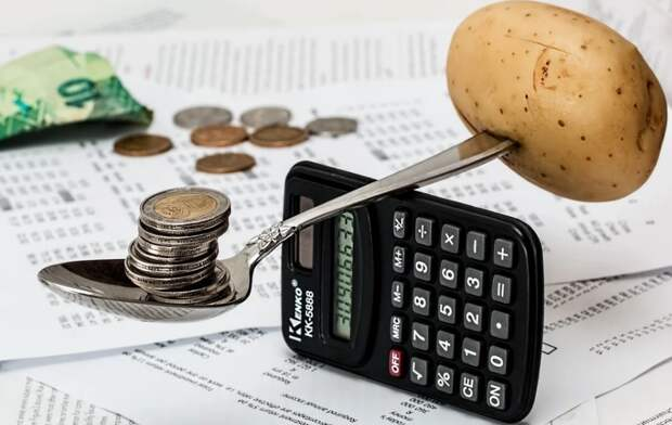 В Госдуме готовят к принятию закон о едином реестре сведений о домохозяйствах и их доходах