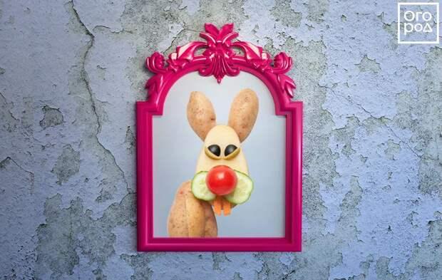 Коллаж - заяц в зеркале