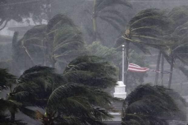 Из-за урагана «Лаура» в США пройдет массовая эвакуация