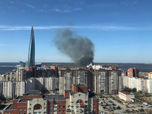 Лахту заволокло дымом. Вдоль Приморского шоссе тушат камыш и траву на поле