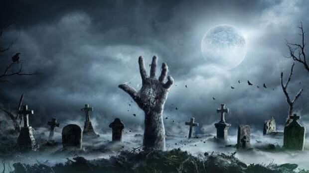 Как Живет Тело После Смерти