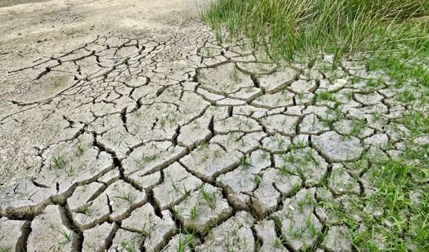 Штормовое предупреждение объявили из-за жары вРостовской области с26июля