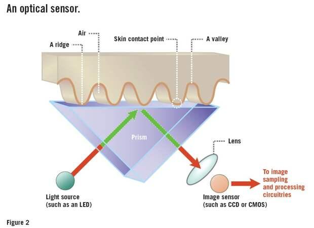 Сканеры отпечатков пальцев: как это работает