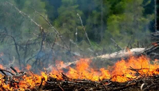 Пять пожаров, 17 ДТП и прочие неприятности в Севастополе