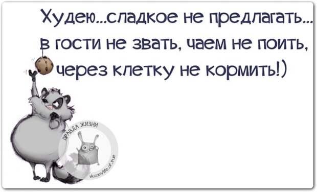 Веселые фразки в нескучных картинках :)