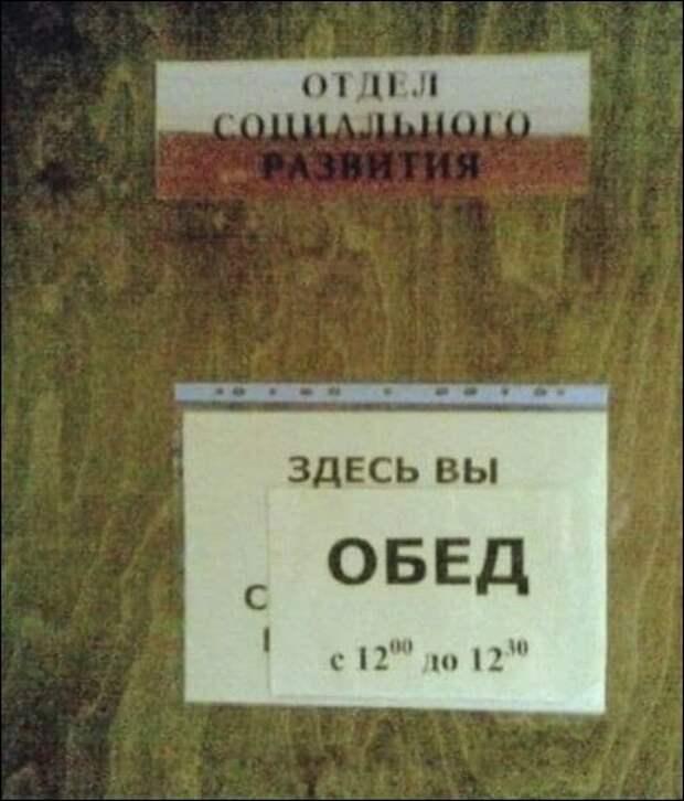 Загонные объявления и надписи (15 фото)