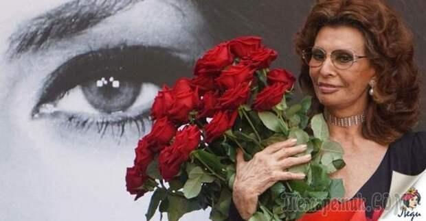 Софи Лорен — 84, но она по-прежнему прекрасна! Вот ее 7 советов для женщин