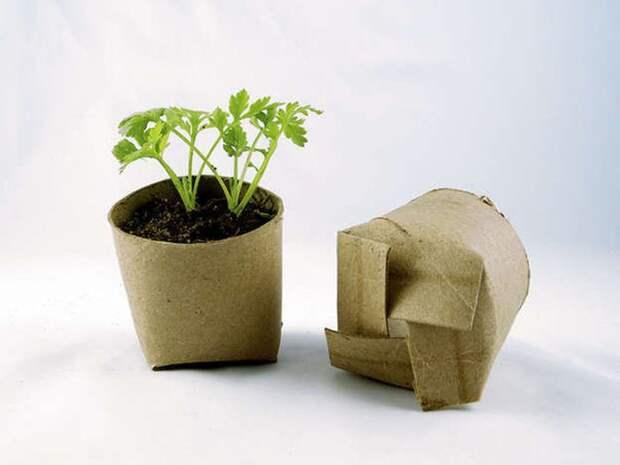 2. Не нравятся неэкологичные пластиковые горшки для цветов? Сделайте свои из туалетной бумаги сад, советы, хитрость