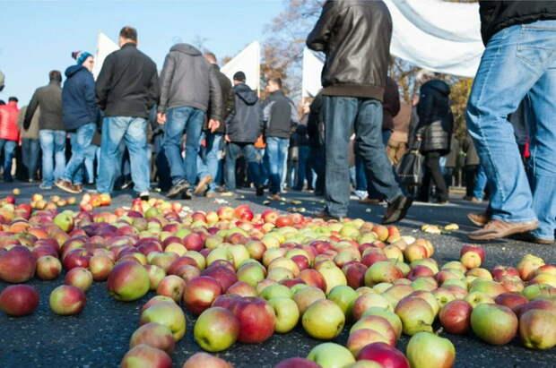"""Помните:""""Ешь яблоки назло Путину""""? Но спустя 6 лет поляки мечтают продать свои яблоки в Россию"""