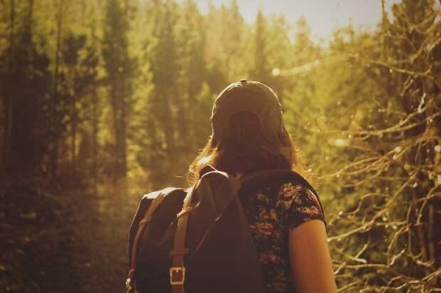 В Удмуртии вновь ввели запрет на посещение лесов