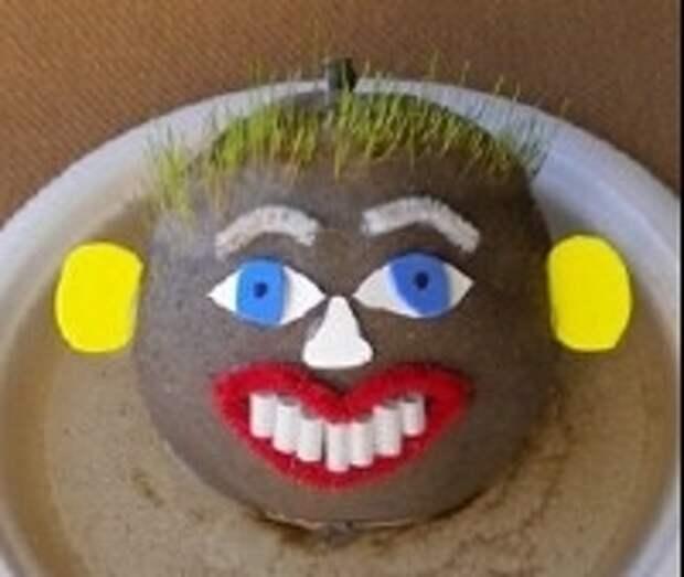 осле этого переместите поделку травянчик в пластиковую тарелку и хорошо полейте. Поставьте на подоконник травянчика и уже спустя несколько дней увидите, как прорастает трава. Не забывайте о регулярном поливе, трава любит влагу.